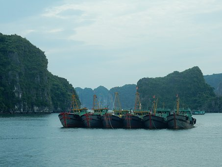 Halong Bay Discovery with 4-star Phoenix Cruise (2D1N)