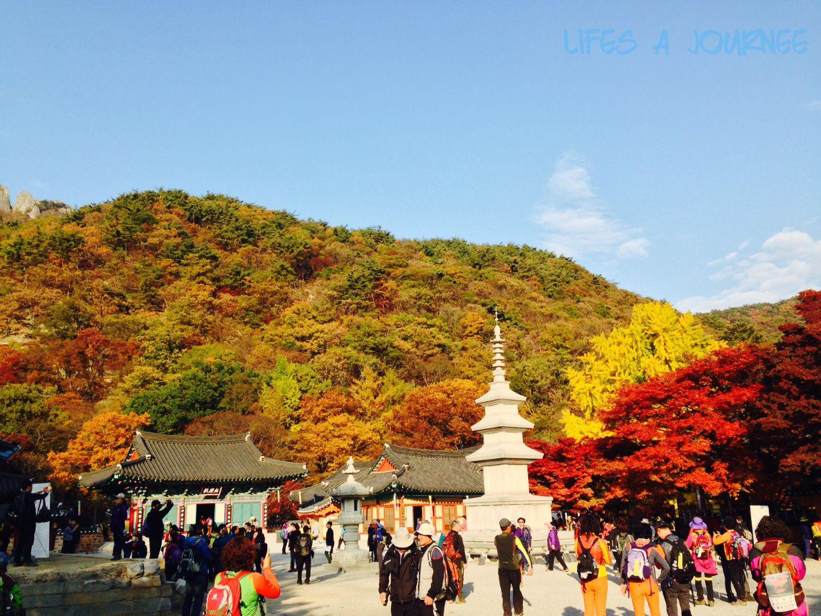 Cẩm nang du lịch Hàn Quốc
