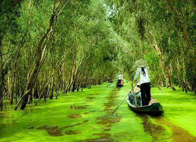 Cẩm nang du lịch miền Tây sông nước