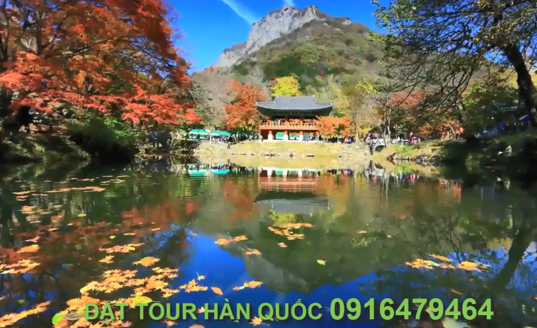 Tour Hàn Quốc mùa lá đỏ  5 ngày 4 đêm- Seoul- Nami-Everland-Cầu Thủy Tinh